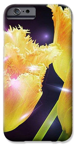 Sunshine Tulips iPhone Case by Debra  Miller