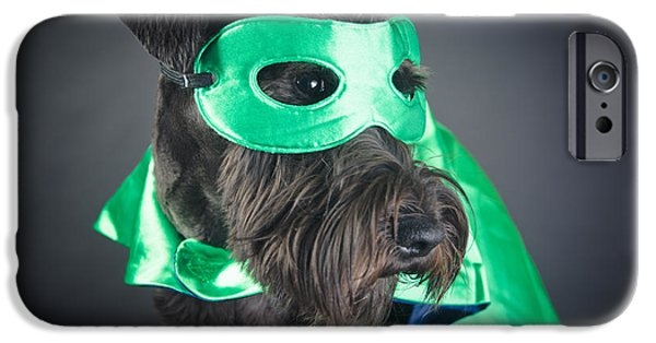 Cute Schnauzer iPhone Cases - Super dog portrait iPhone Case by Mesha Zelkovich
