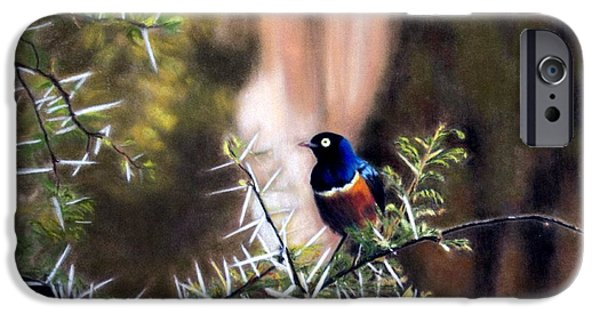 Office Pastels iPhone Cases - Superb Starling iPhone Case by Carol McCarty
