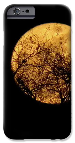 SuperMoon 2 iPhone Case by Laura Yamada
