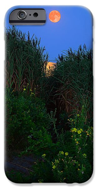 New England Landscapes iPhone Cases - Supermoon 2014 -Color iPhone Case by Lourry Legarde