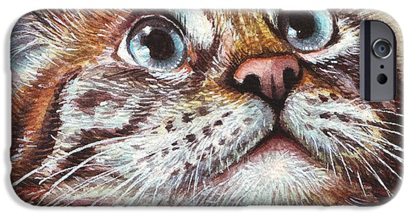 Pets Art iPhone Cases - Surprised Kitty iPhone Case by Olga Shvartsur