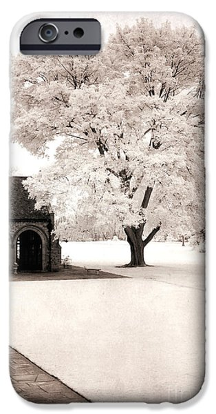 Park Scene iPhone Cases - Surreal Dreamy Ethereal Winter White Sepia Infrared Nature Tree Landscape iPhone Case by Kathy Fornal