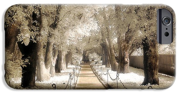 Surreal Landscape iPhone Cases - Surreal Dreamy Infrared Sepia - Hopeland Gardens Park South Carolina Pathway Nature Landscape  iPhone Case by Kathy Fornal