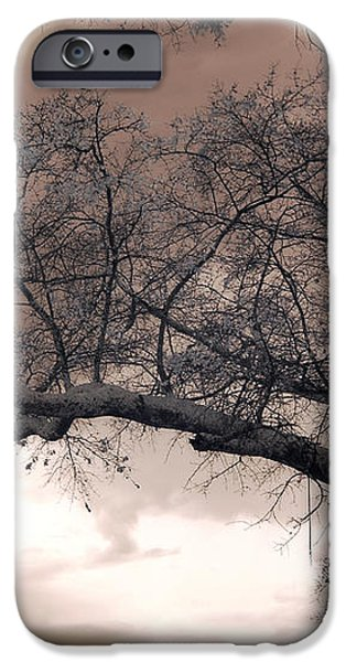 Surreal Fantasy Gothic South Carolina Oak Trees iPhone Case by Kathy Fornal