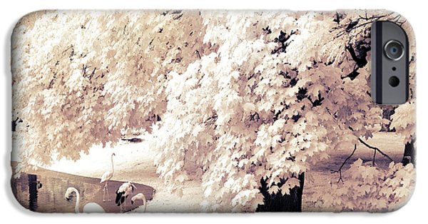 Park Scene iPhone Cases - Surreal Infrared Ethereal Nature With White Flamingos - Infrared Trees and Flamingos  iPhone Case by Kathy Fornal