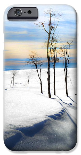 Snow Scene iPhone Cases - Surreal Snowscape iPhone Case by Theresa Tahara