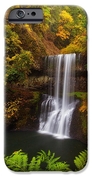Surrounded By Fall iPhone Case by Darren  White