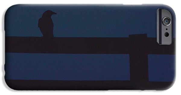 Fog Mist iPhone Cases - Surveying iPhone Case by Carlee Ojeda