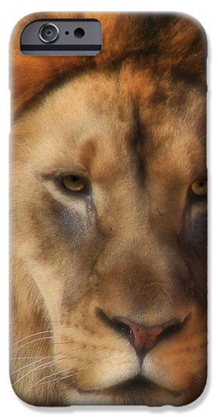 Jc Findley iPhone Cases - Surveying his Dominion iPhone Case by Kyle Findley