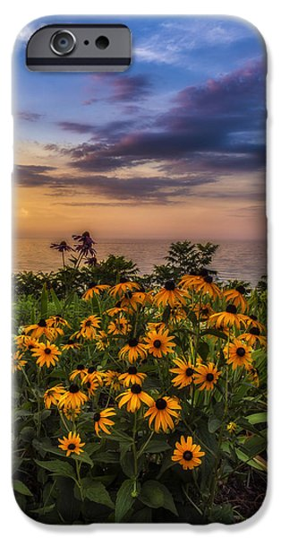 Botanical iPhone Cases - Susans sunset iPhone Case by Mark Papke