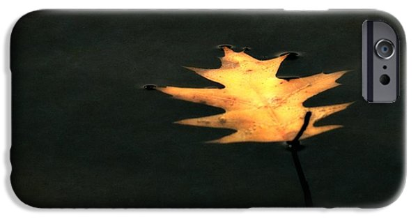 Autumn Leaf On Water iPhone Cases - Suspended iPhone Case by Michelle Calkins