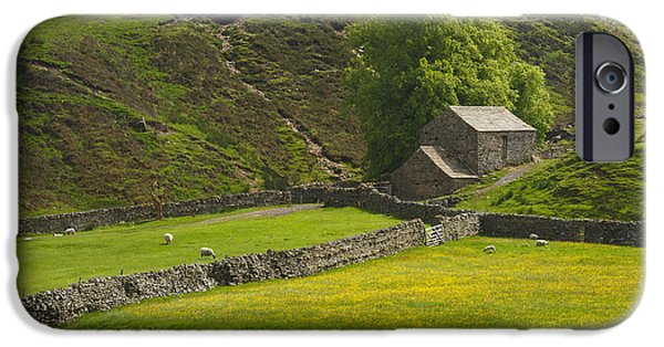 Grazing Sheep iPhone Cases - Swaledale Landscape iPhone Case by Louise Heusinkveld