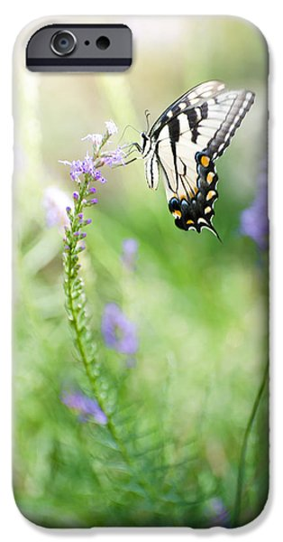 Freedom Pyrography iPhone Cases - Swallowtail Butteerfly iPhone Case by Vincent  Dale