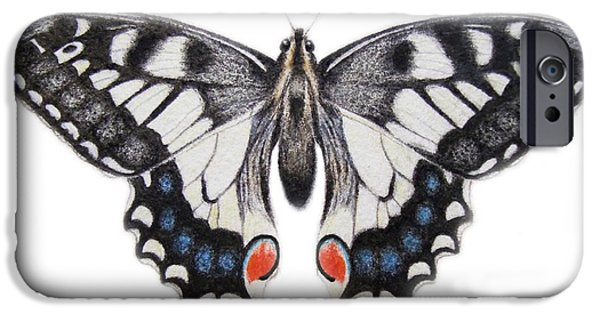 Insects Drawings iPhone Cases - Swallowtail iPhone Case by Ele Grafton