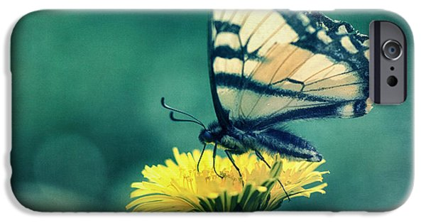 Blue Swallowtail iPhone Cases - Swallowtail iPhone Case by Priska Wettstein