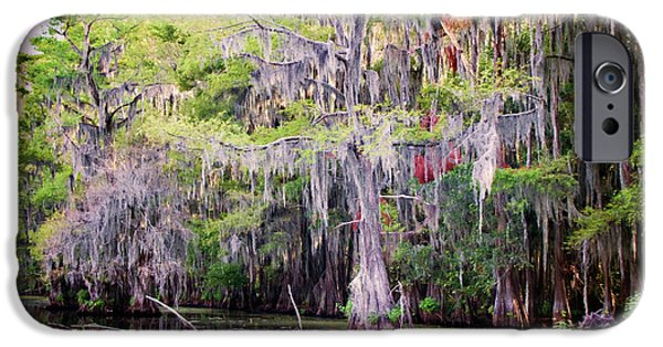 Caddo Lake iPhone Cases - Swamp Colors iPhone Case by Lana Trussell