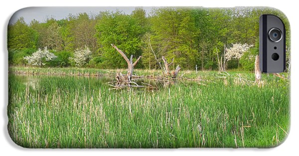 Nature Center Pond iPhone Cases - Swamp Corner iPhone Case by Deborah Smolinske