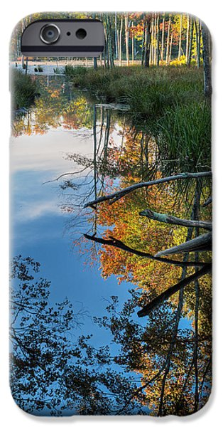 Southern New England iPhone Cases - Swamp Reflections iPhone Case by Bill  Wakeley
