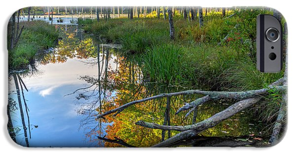 Southern New England iPhone Cases - Swamp Reflections Landscape iPhone Case by Bill  Wakeley