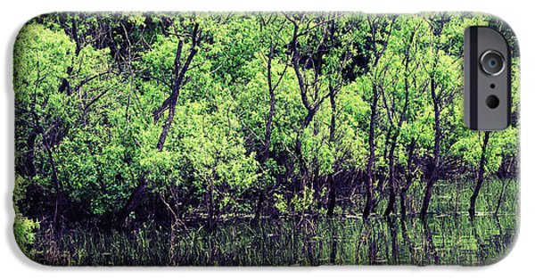 Canada Photograph iPhone Cases - Swamp iPhone Case by Sophie Vigneault