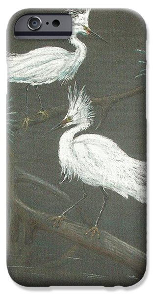 Snowy Pastels iPhone Cases - Swampbirds iPhone Case by Terry Frederick