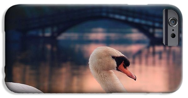 Swans... iPhone Cases - Swan Bridge iPhone Case by Henry Kowalski