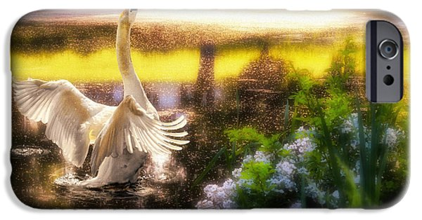 Swans... iPhone Cases - Swan Lake iPhone Case by Lois Bryan