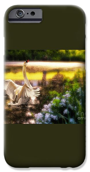 Swan Lake iPhone Case by Lois Bryan