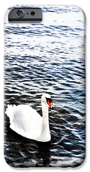 Swans... iPhone Cases - Swan iPhone Case by Mark Rogan