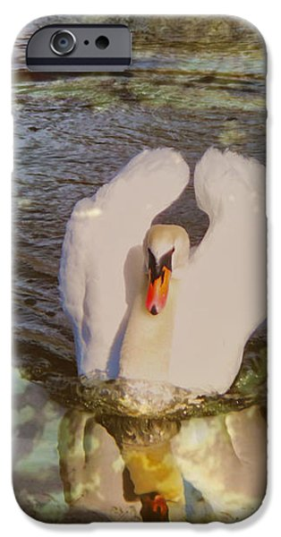 Swan Reflections iPhone Case by Cheryl Young