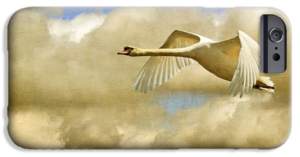 Swans... iPhone Cases - Swan Song iPhone Case by Lois Bryan
