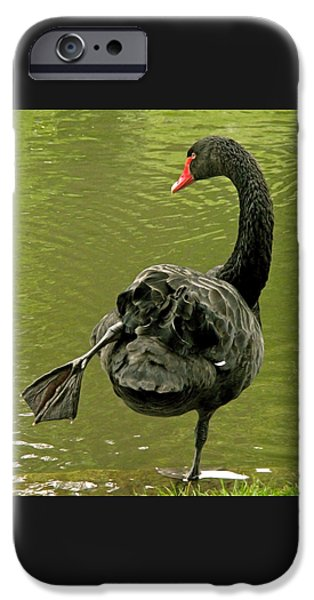 Bird iPhone Cases - Swan Yoga iPhone Case by Rona Black