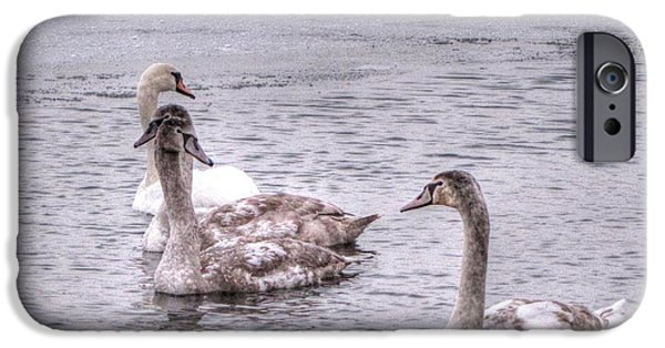 Swans... Pyrography iPhone Cases - Swans On The Lake In Winter iPhone Case by Yury Bashkin