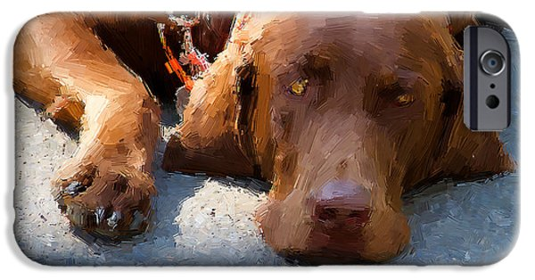 Chocolate Lab Digital Art iPhone Cases - Sweet Chocolate iPhone Case by Alice Gipson