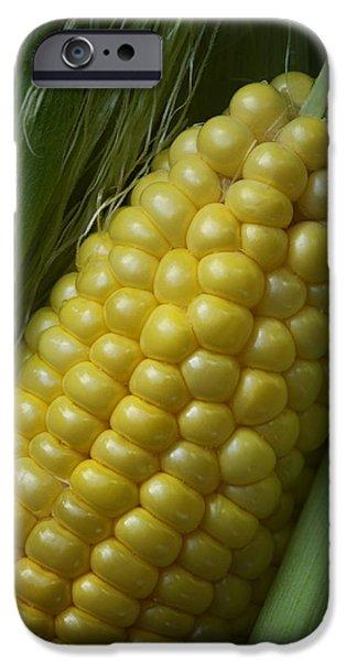 Sweet Corn iPhone Cases - Sweet Corn - On the Cob iPhone Case by Nikolyn McDonald
