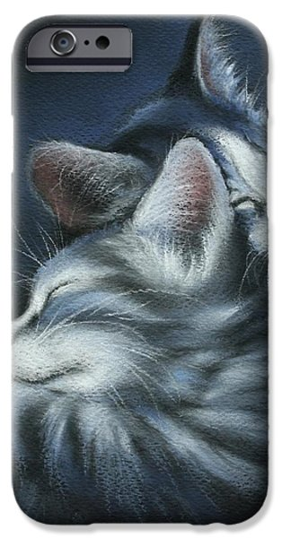 Sweet Dreams iPhone Case by Cynthia House