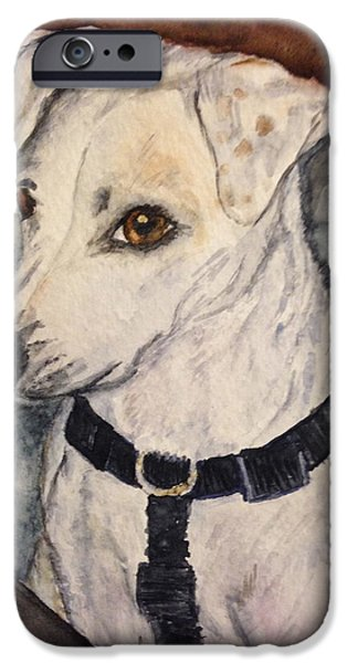 Dogs iPhone Cases - Sweet JR iPhone Case by Carol Warner