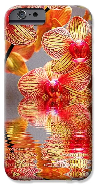 Floral Digital Art Digital Art iPhone Cases - Sweet Orchid Reflection iPhone Case by Judy Palkimas
