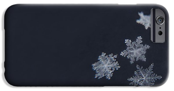 Winter Photographs iPhone Cases - Sweet Snowflakes iPhone Case by Carrie Ann Grippo-Pike