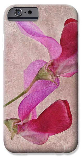 Close Up Floral iPhone Cases - Sweet Textures 2 iPhone Case by John Edwards