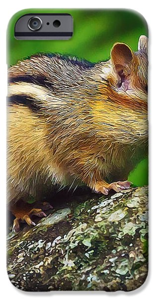 Sweetpea Poses iPhone Case by Bill Caldwell -        ABeautifulSky Photography