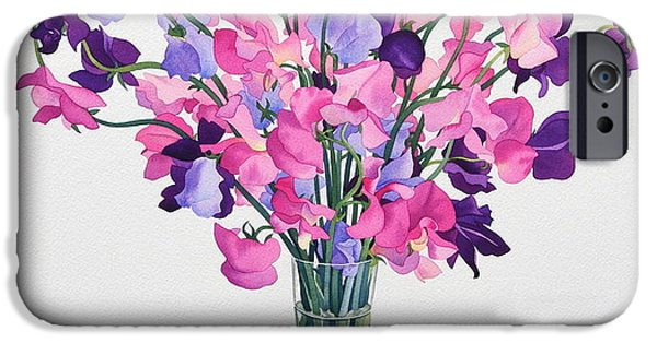 In Bloom Paintings iPhone Cases - Sweetpeas iPhone Case by Christopher Ryland