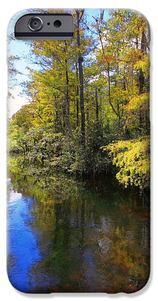 National Preserves iPhone Cases - Sweetwater Strand - 3 iPhone Case by Rudy Umans