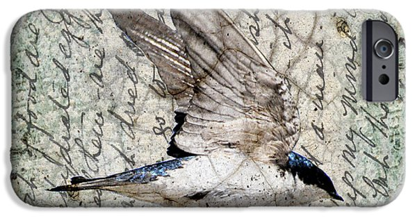 Barn Swallow iPhone Cases - Swift Wings iPhone Case by Judy Wood