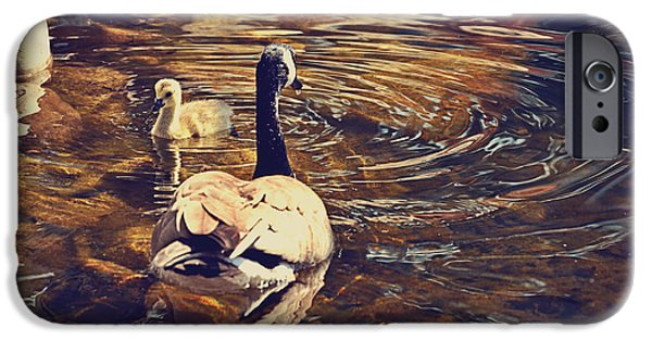 Mother Goose iPhone Cases - Swimming With Mom iPhone Case by Maria Angelica Maira
