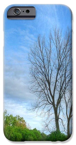 Swirly Sky and Tree iPhone Case by Deborah Smolinske
