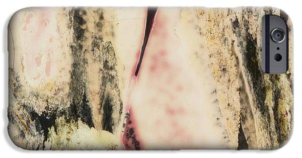Painter Photographs iPhone Cases - SX Landscape V  c1978 iPhone Case by Paul Ashby