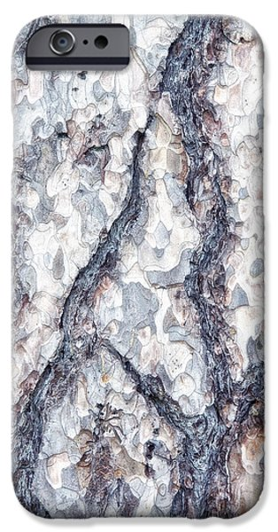 Sycamore iPhone Cases - Sycamore Bark Abstract iPhone Case by Tom Mc Nemar