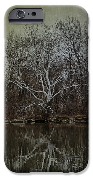 Tree. Sycamore iPhone Cases - Sycamore Dancer iPhone Case by Terry Rowe